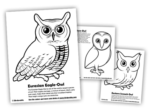 Eagle-owl coloring #14, Download drawings