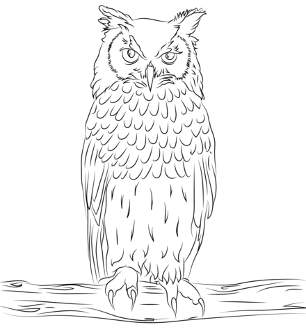 Eagle-owl coloring #12, Download drawings