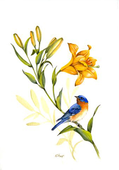 Eastern Bluebird clipart #3, Download drawings