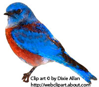 Eastern Bluebird clipart #16, Download drawings