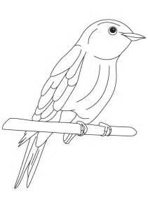 Eastern Bluebird coloring #10, Download drawings
