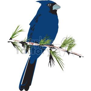 Indigo Bunting svg #5, Download drawings