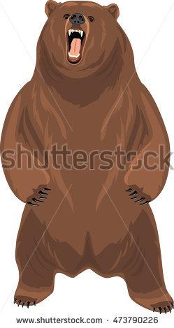 Eastern Brown Bear clipart #13, Download drawings
