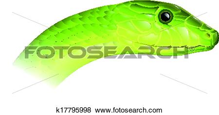 Eastern Green Mamba clipart #19, Download drawings
