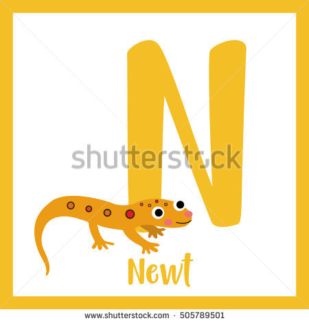 Eastern Newt  clipart #4, Download drawings