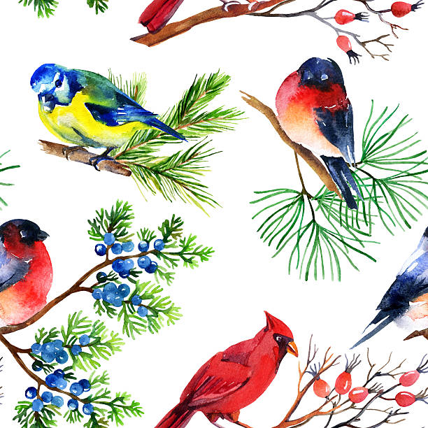 Eastern Tanager clipart #10, Download drawings