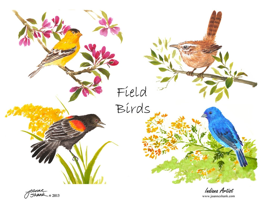 Eastern Tanager clipart #6, Download drawings