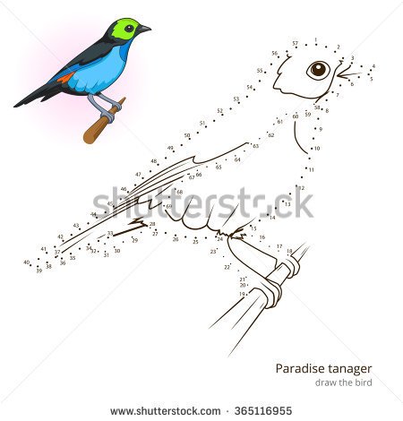 Eastern Tanager clipart #18, Download drawings