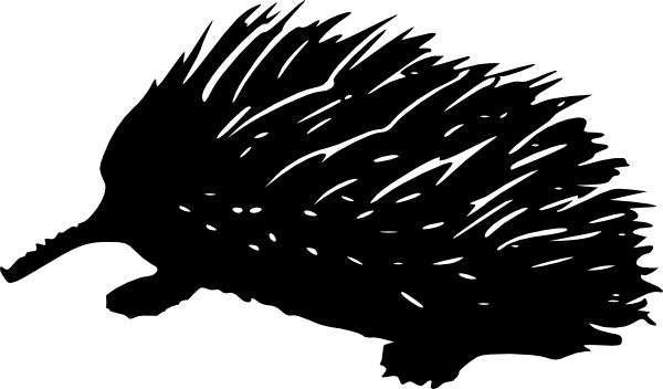 Echidna clipart #4, Download drawings