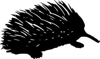 Echidna clipart #5, Download drawings