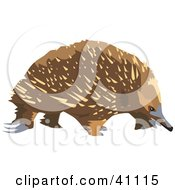 Echidna clipart #12, Download drawings