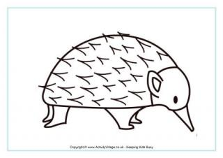 Echidna coloring #12, Download drawings