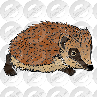 Echidna svg #4, Download drawings