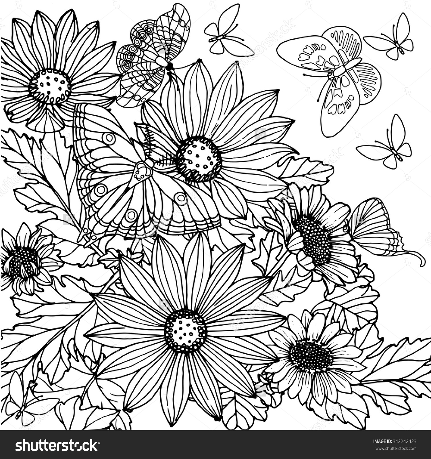 Echinacea coloring #13, Download drawings