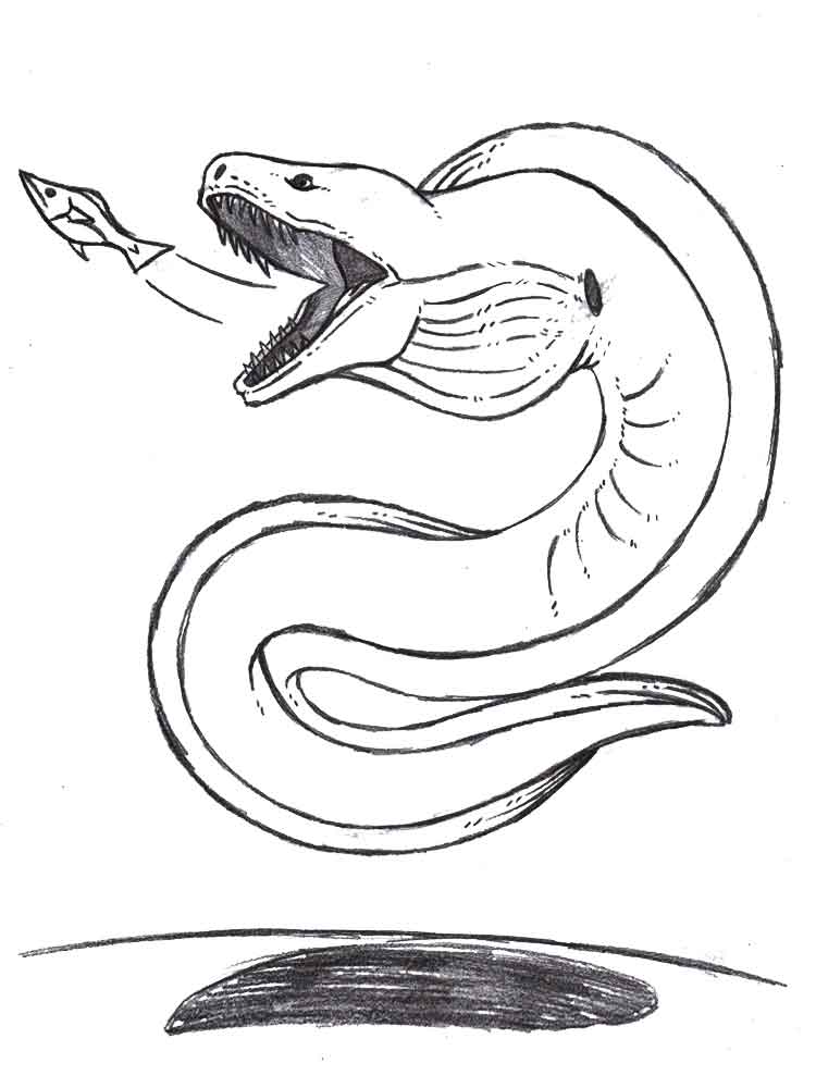 Eel coloring #8, Download drawings