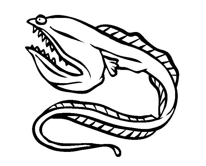 Eels coloring #1, Download drawings