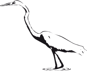 Egret clipart #7, Download drawings