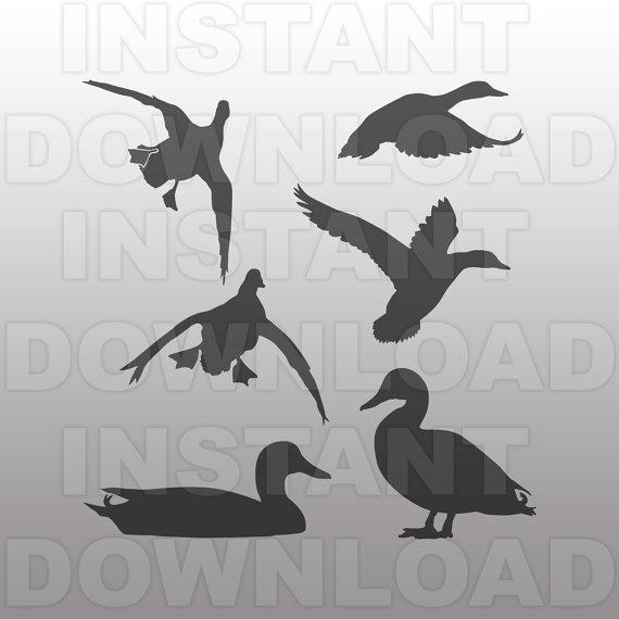 Mallard svg #20, Download drawings