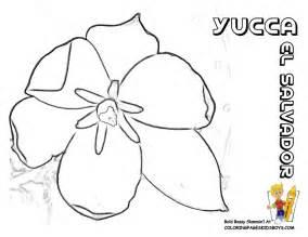 El Salvador coloring #10, Download drawings