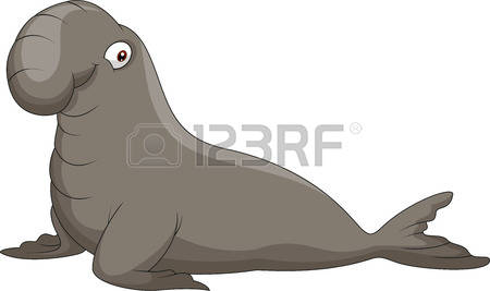 Elephant Seal clipart #11, Download drawings