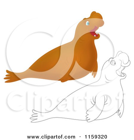 Elephant Seal clipart #6, Download drawings