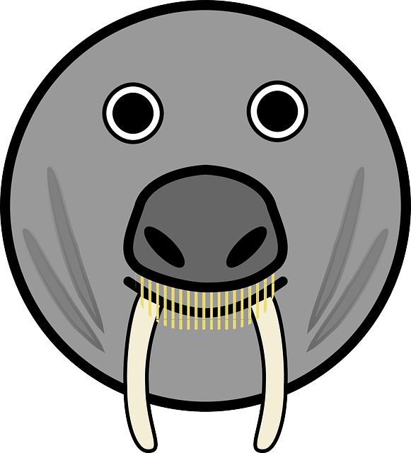 Elephant Seal svg #7, Download drawings