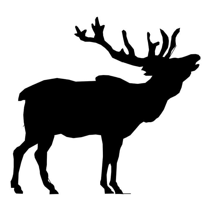 Elk clipart #4, Download drawings