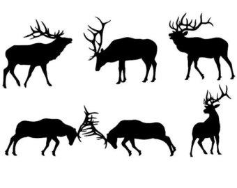 Elk clipart #1, Download drawings