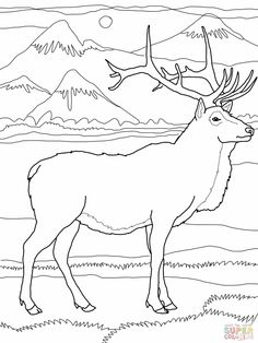 Elk coloring #18, Download drawings