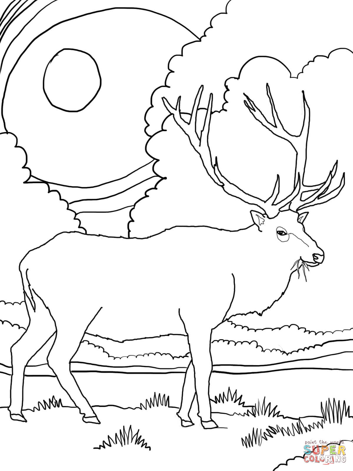 Elk coloring #1, Download drawings