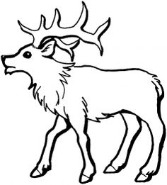 Elk coloring #20, Download drawings