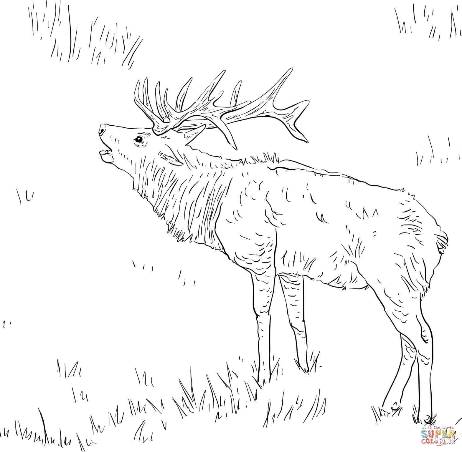 Elk coloring #4, Download drawings