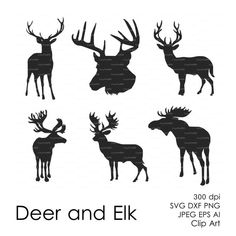 Elk svg #297, Download drawings