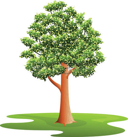 Elm Tree clipart #20, Download drawings