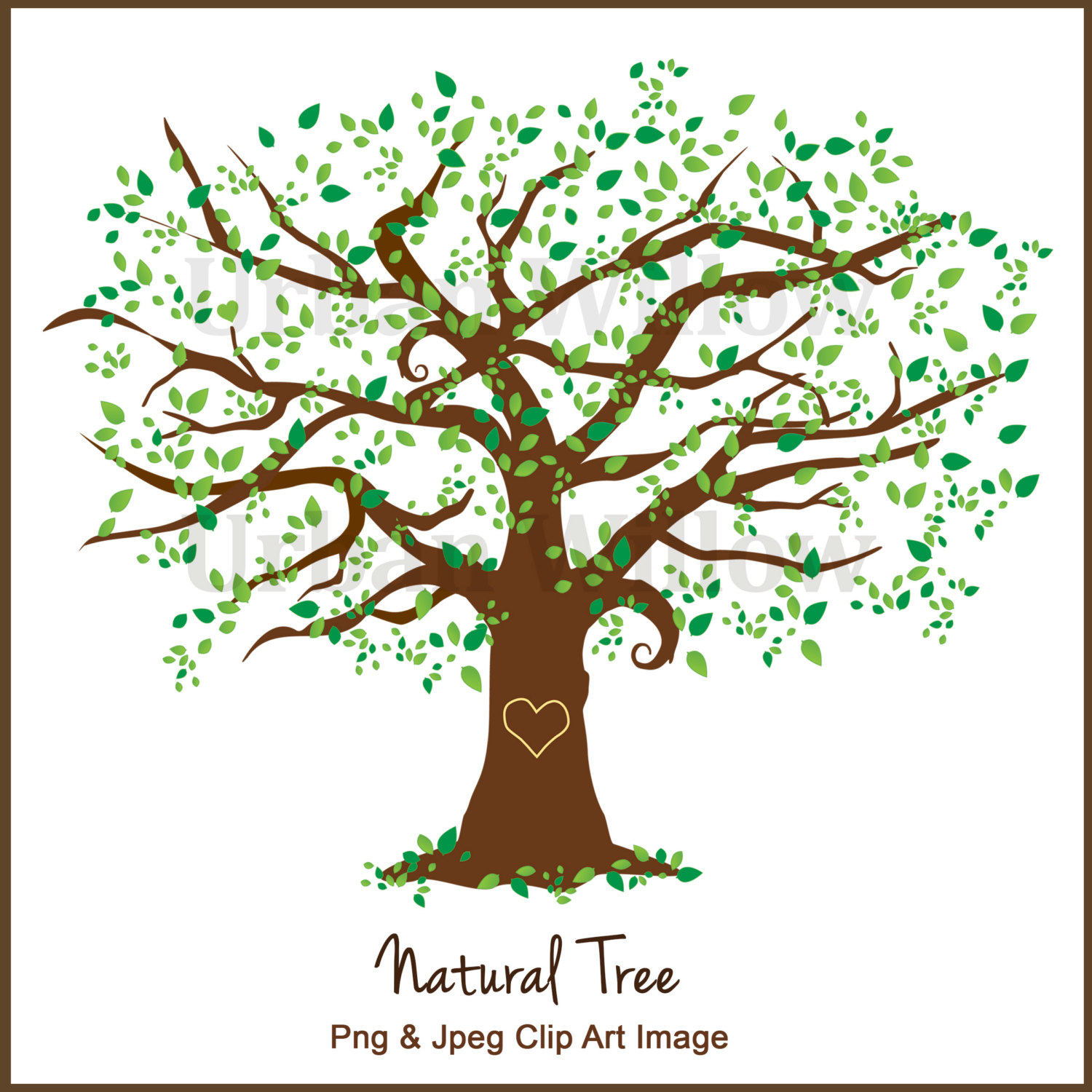 Elm Tree clipart #8, Download drawings