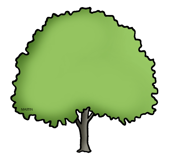 Elm Tree clipart #11, Download drawings
