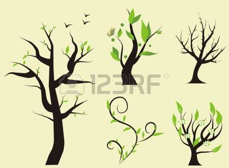 Elm Tree clipart #19, Download drawings