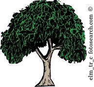 Elm Tree clipart #1, Download drawings