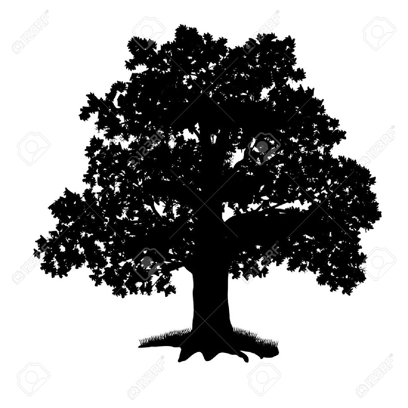 Elm Tree clipart #14, Download drawings
