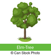 Elm Tree clipart #3, Download drawings