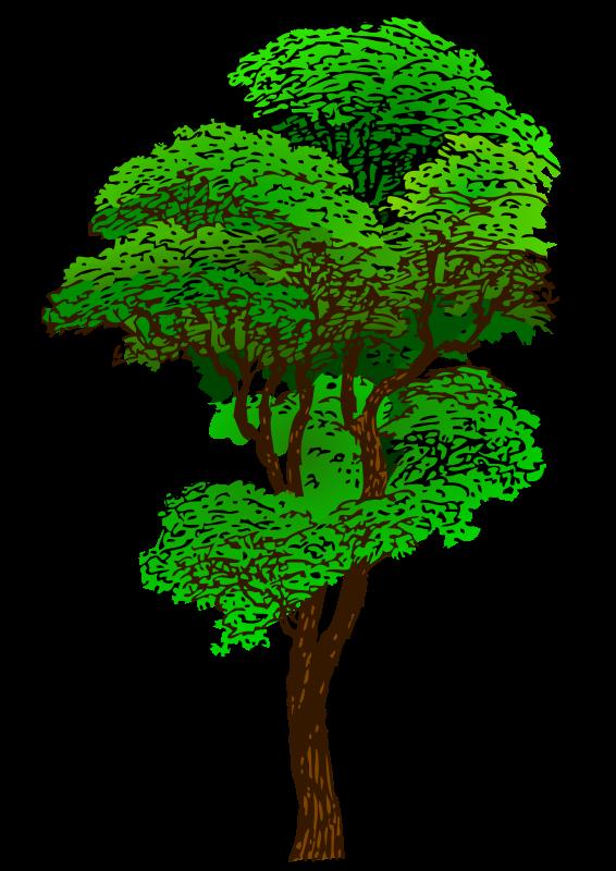 Elm Tree svg #17, Download drawings