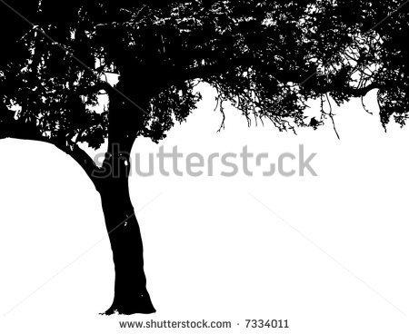 Elm Tree svg #8, Download drawings