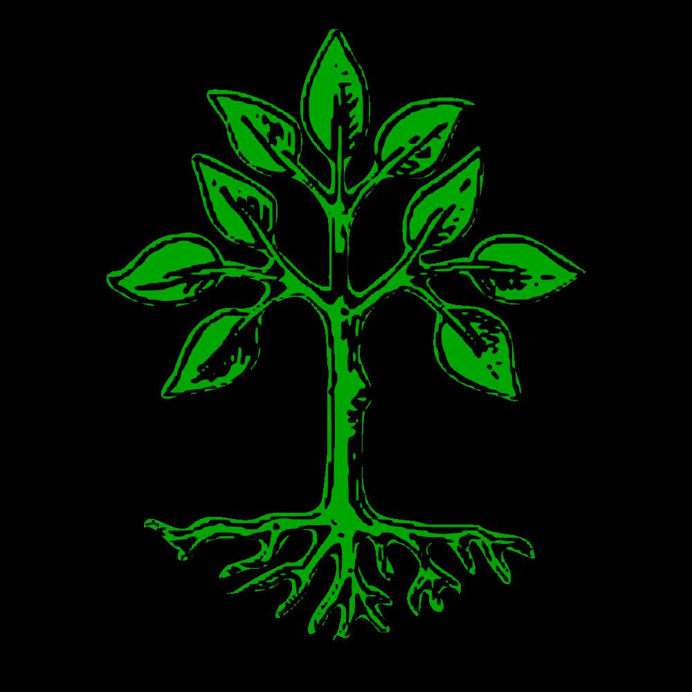 Elm Tree svg #13, Download drawings