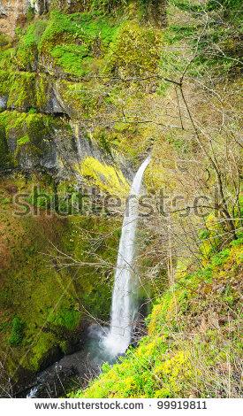 Elowah Falls clipart #19, Download drawings