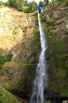 Elowah Falls svg #13, Download drawings