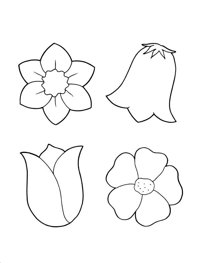 Elower coloring #2, Download drawings