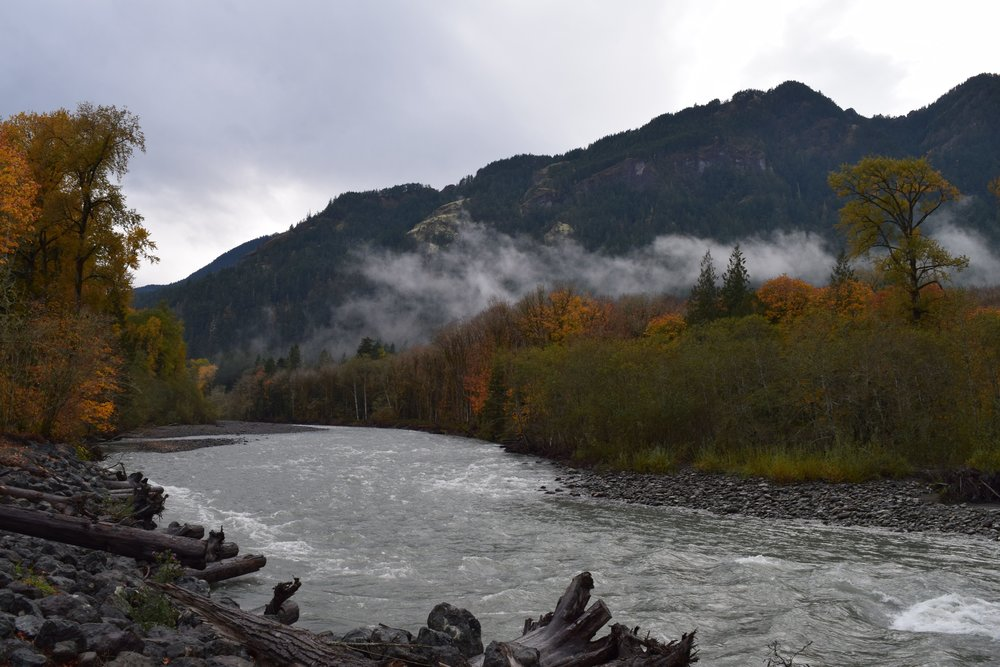 Elwha River clipart #11, Download drawings
