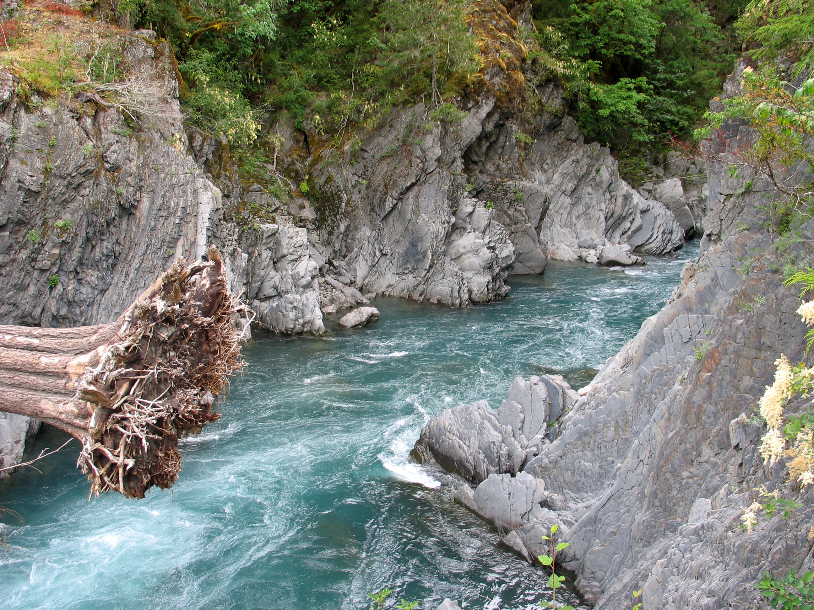 Elwha River svg #6, Download drawings