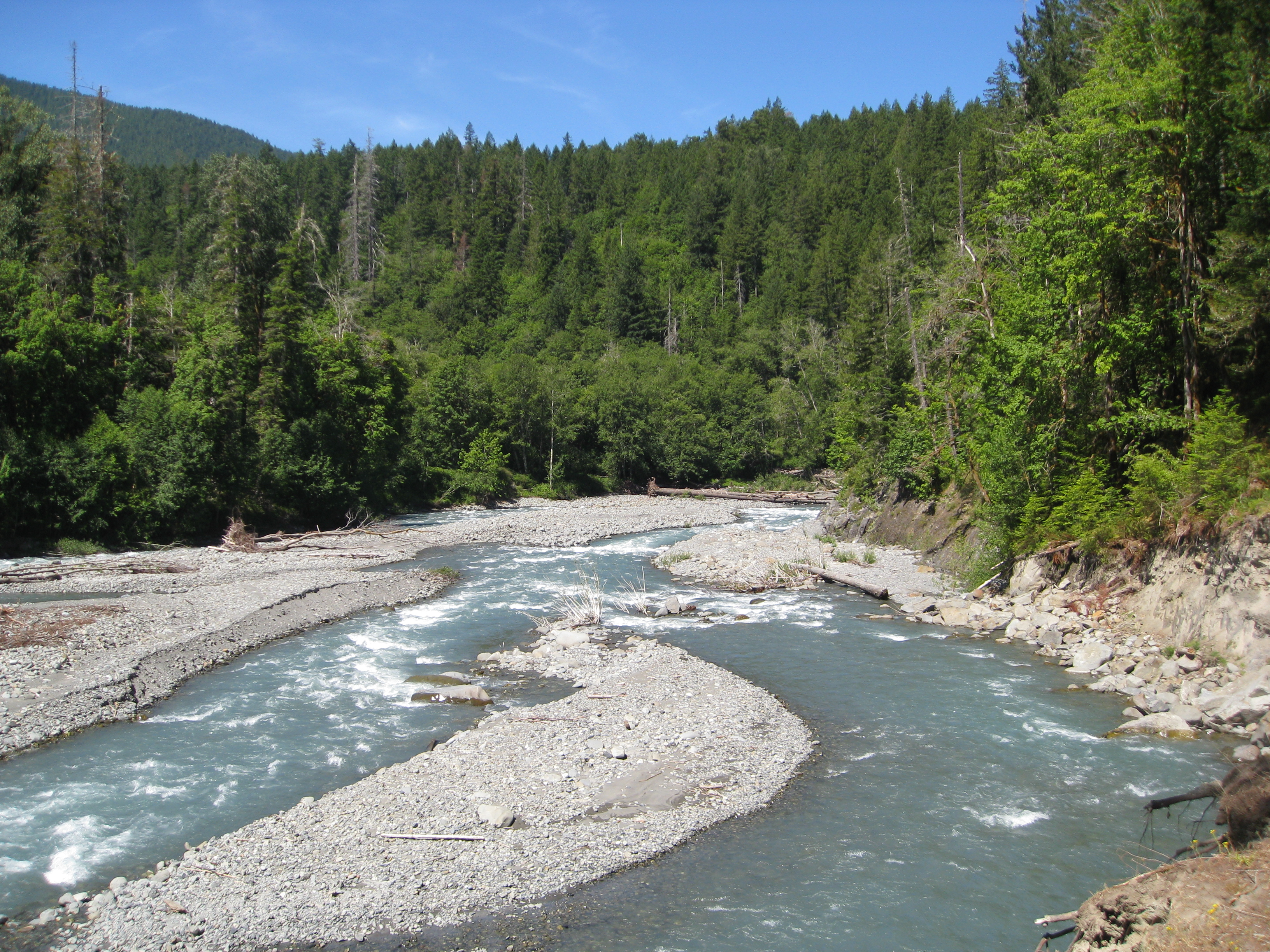 Elwha River svg #15, Download drawings