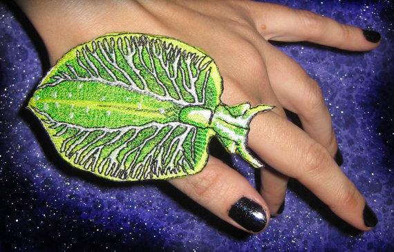 Elysia Chlorotica coloring #17, Download drawings